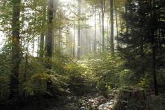 05_Herbstwanderritt
