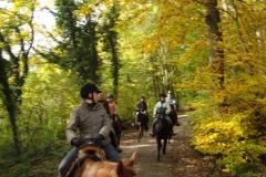 08_Herbstwanderritt