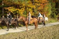 13_Herbstwanderritt