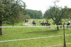 14_Herbstwanderritt_2011